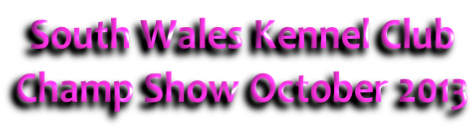 South Wales Kennel Club Champ Show October 2013